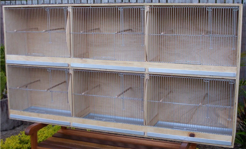 Budgerigar Breeding Cage (Six) with Divider