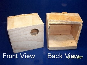 Custom Budgie Breeding Box 200mm