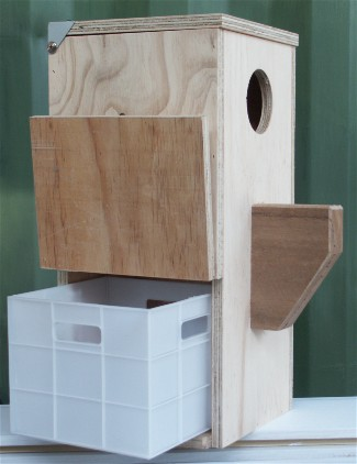 Parrot Breeding Box