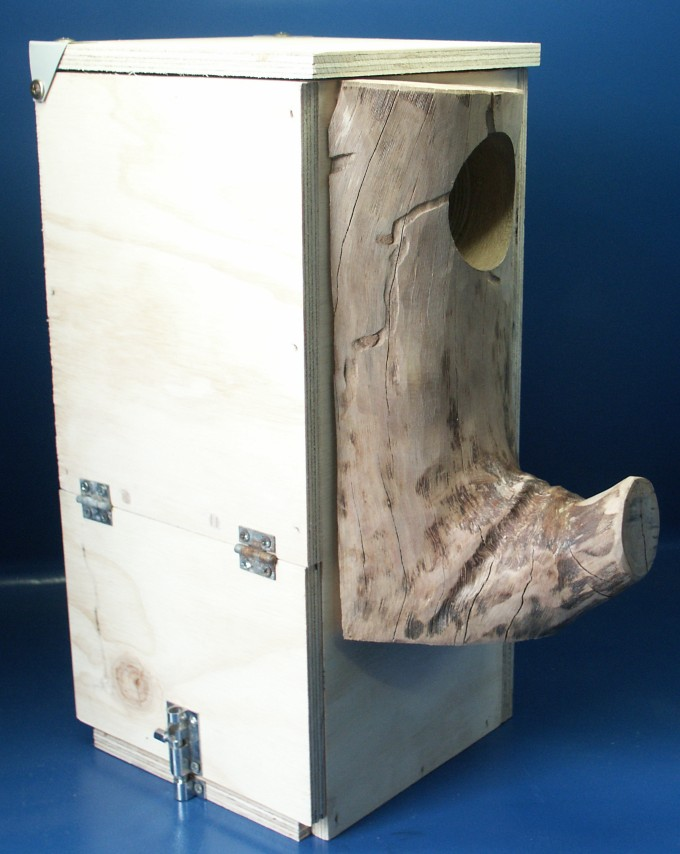 Custom Parrot Breeding Box
